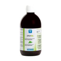 Ergysil de 500ml de Laboratorios Nutergia (Antioxidantes)