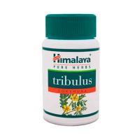 Gokshura Tribulus Terrestris - 60 Cápsulas Himalaya Herbal Healthcare - 1