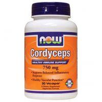 Cordyceps 750mg - 90 Cápsulas vegetales
