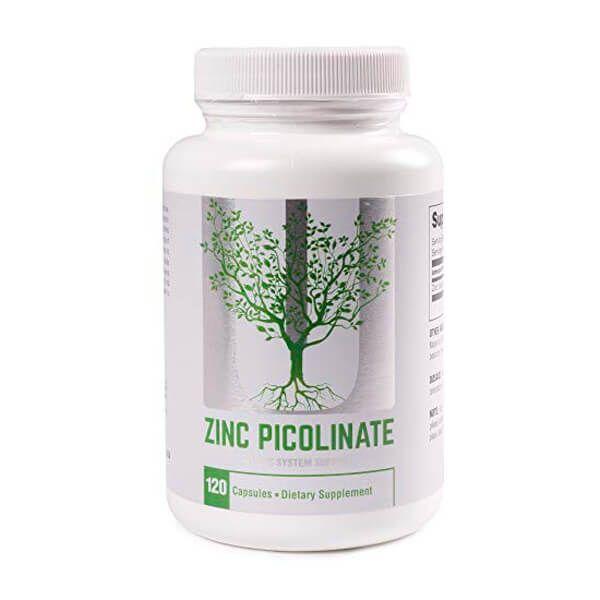 Zinc Picolinato - 120 Cápsulas
