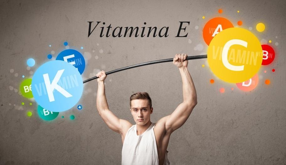 Vitamina E L'antiossidante per eccellenza |Vitaminas Fitness 3ª Parte