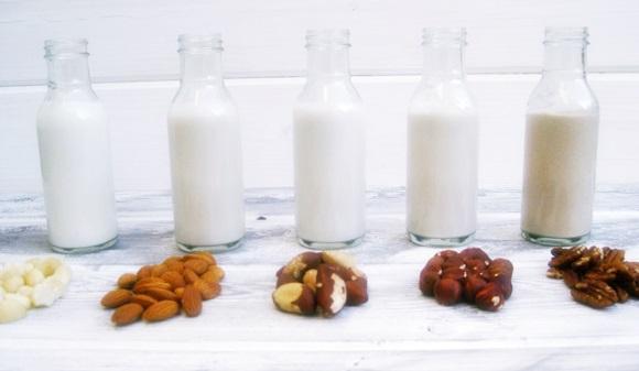 Seis leches vegetales como sustitutivo de la leche de vaca