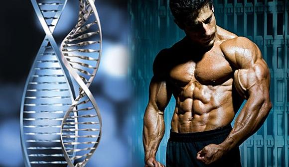 Conociendo las variables genéticas