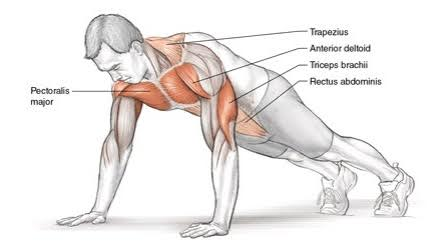 rutina triceps en casa