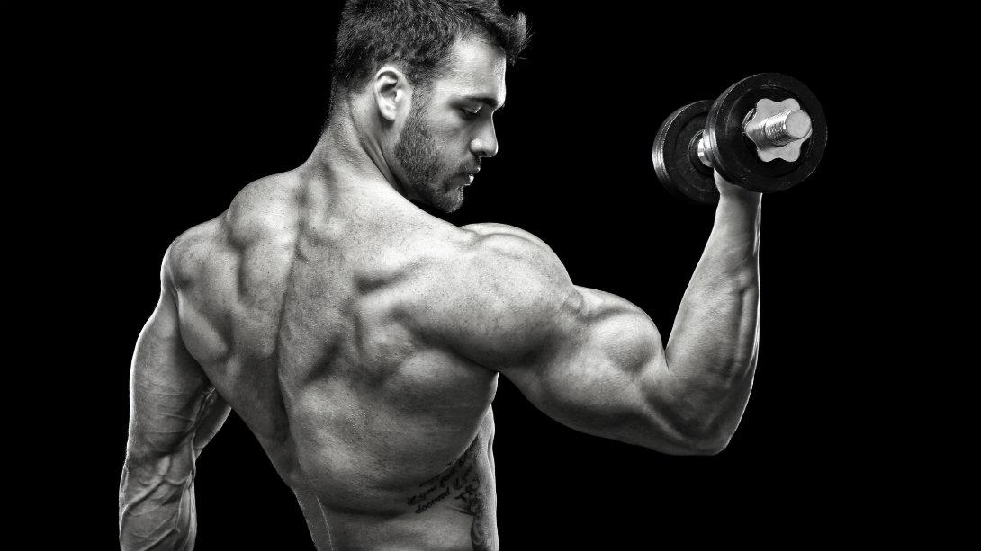 Factores limitantes en la ganancia muscular