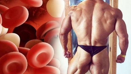 La vía mTOR en la hipertrofia muscular