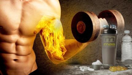 La vía AMPk, la quema de grasas ¿y más?
