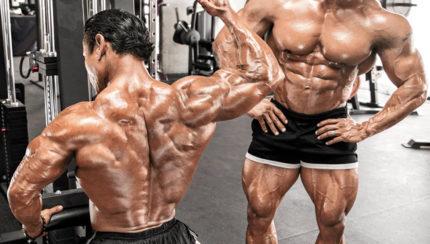 El entrenamiento de espalda: ¿cómo desarrollarlo?