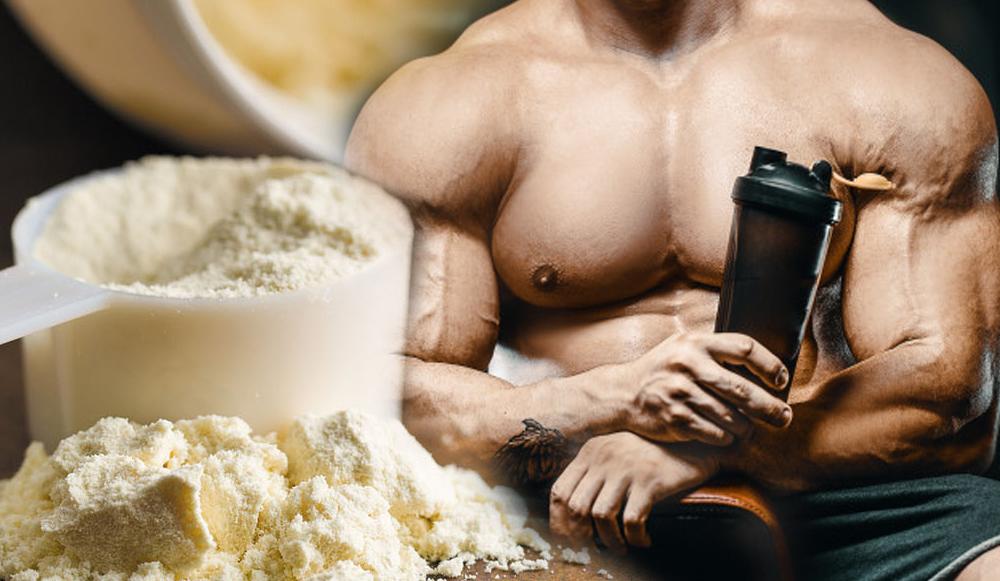 aislado de proteína de suero