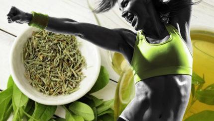 El poder del extracto de té verde