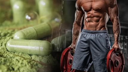 Los mejores ingredientes vegetales para el rendimiento